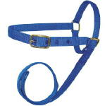 Sheep/Goat Leading Halter--Red