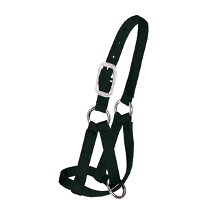 Average Alpaca Halter - Black