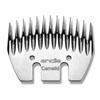 Camilid Comb