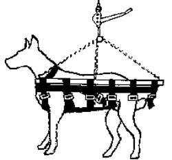 Canine Adjustable Vet Sling
